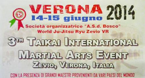 Taikai 2014: le arti marziali arrivano a Verona